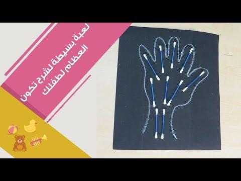 بالفيديو تجربة بسيطة لشرح تركيب العظام للأطفال